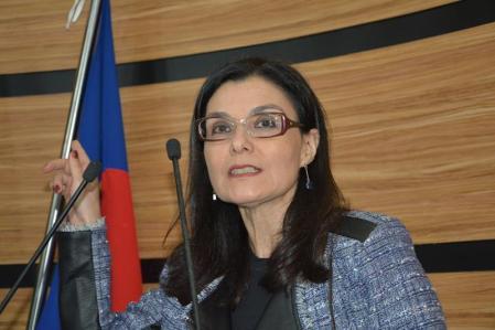 Promotora Karina Cherubini
